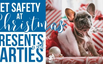 Pet Safety at Christmas: Presents and Parties